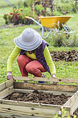 Woman setting up a prefabricated wooden kitchen garden square