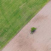 Agricultural landscape, La Rioja, Spain, Europe