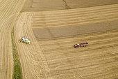 Harvesting a barley field in summer, Côte d'Opale, Pas de Calais, France