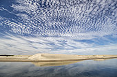 Sand Dunes, Magdalena Bay, Puerto San Carlos, Baja California, Mexico.