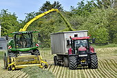 Milling of oat cereals to produce silage in Brognard, Doubs, France
