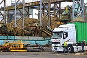 Sugar cane processing plant, Reunion Island