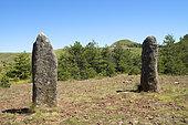Menhirs and Puech de Mariette, Cham des Bondons, Lozere, France