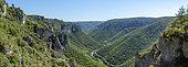 Gorges du Tarn from Baousse del Biel, La Bourgarie, Les Vignes, Cevennes, Lozere, France
