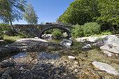 Bridge of Mas Camargues, Lozere, France