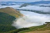 Depuis le Pic Occabe,vue de la mer de nuages au dessus de la forêt d'Iraty, au loin émerge l'Errozate (1345m), Basse Navarre, Pyrénées Atlantiques, France