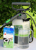 Spraying a milk-based powdery mildew treatment