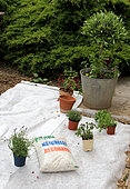 Preparation of a small garden with protective film for maintenance-free planting