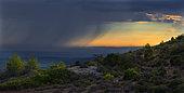 Rain showers in the Rhone Valley, Mont Ventoux, Comtat Venaissin, Provence, France