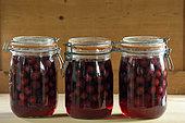 Preserving jars, cherries, kitchen, house, Belfort, Territoire de Belfort, France