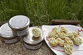 Parcs d'élevage d'escargots Gros Gris (Helix aspersa maxima), produits transformés, l'Escargotière des Chênes, Champagney, Haute-Saône, France