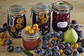 Preserved fruit, jars, fruit in syrup, compote, Quetsche d'Alsace plums (Prunus domestica), plums, pear, cherries, fruit, kitchen, Belfort, Territoire de Belfort, France