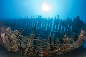 Low angle view boat wreck with frames, Tahiti, French Polynesia