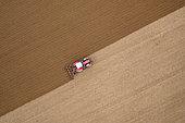 Tractor during stubble ploughing in autumn, Pas-de-Calais, Opal Coast, France