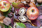 Autumn Still Life: Apples, Walnuts and Chestnuts on Vine Leaves