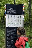 Educational sign, Les Arbres, signposting for hikes, child, forest, trail of the Etangs du Malsaucy et de la Véronne, Sermamagny, Territoire de Belfort, France