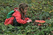 Girl observing fly agaric or false spiny moth (Amanita muscaria), forest, Malsaucy and Véronne ponds trail, Sermamagny, Territoire de Belfort, France