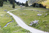 Route non revétu dans le Val de Nendaz, Valais, Suisse