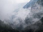Entrance of the Gorges de Saint Pierre, Alpes, Alpes de Haute Provence, France