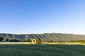 shed in the North of the Grand Luberon, Cereste, Alpes de Haute Provence, France