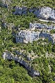 Nesque Gorges, NRP Ventoux, Vaucluse, France
