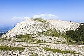 Lure mountain ridges, Natura 2000 site, Luberon-Lure Biosphere Reserve, Alpes de Haute Provence, France