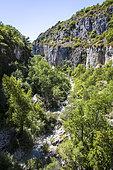 The Oppedette Gorges, Calavon, Sensitive Natural Area, Luberon NRP, Alpes de Haute Provence, France