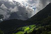 Mountain huts in sunny spot on mountain meadow with mountain forest behind, Schoppernau, Bregenzerwald, Vorarlberg, Austria, Europe