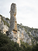 "Limestone ""Finger"" in a combe of the Monts de Vaucluse, Luberon, France"
