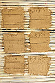 Test of different compositions of raw clay coatings on reeds, France