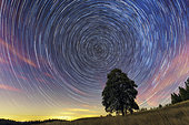 Ballet of stars around the polar axis. Pose of two hours . South of the Jura Massif, France