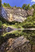 Basaltic organs of Pourcheyrolles, in Ardèche. Cliff of basaltic prisms 32 meters high, under the castle of Pourcheyrolles, near Montpezat-sous-Bauzon, in Ardeche - site of the Geopark des Monts d''Ardèche - Coulées issues du Maar du Chambon. France
