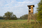 Hunting lookout at dawn, April, Hesse, Germany