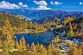 Mountain lake surrounded by autumnal larches, Alpe Salei, Tal Onsernone, Canton Ticino, Switzerland, Europe