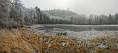 Frosted peat bog and dungeon of the old castle of Waldeck, Vosges du Nord Regional Nature Park, France