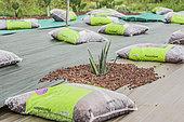Création d'un jardin sec (jardin de succulentes et plantes sans arrosage) sur toile camouflée avec de la pouzzolane.