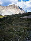 GR5 trail in Queyras, Alps, France