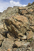 Breaches (nature of the rock) of pillow lavas around the Chenaillet pass, Hautes Alpes, Ancien fond de l'océan, Alpes, France