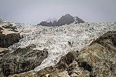 Glacier Blanc, Ecrins National Park, Alps, France