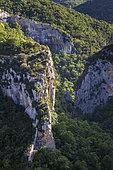 Gorges de la Nesque, Mont Ventoux Regional Nature Park, Provence, France