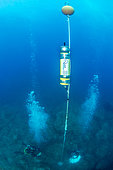 Installation of an acoustic recorder for the study of the frequentation and impact of acoustic diving, in the Natural Marine Reserve of Cerbère-Banyuls, Pyrénées-Orientales, Occitania, France
