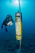 Scuba diver in front of an acoustic recorder installed for the study of the frequency and impact of acoustic diving, Pyrénées-Orientales, Occitania, France