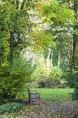Wooden bench in a garden in autumn, Somme, France