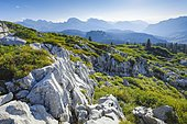 Karst landscape at the Pragelpass, Schwyz, Switzerland, Europe