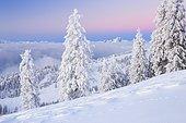 Bernese Alps and Pilatus, Switzerland, Europe
