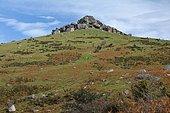 Le Mondarrin (749m),site classé Natura 2000 depuis 2013,en raison de sa biodiversité et ses tourbières d'altitude, Pays Basque, France