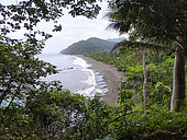 Beach lined with tropical rainforest in Playa Muerto on the Pacific coast, southern Panama
