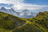 Hiker on hiking trail, snow-covered mountain peaks, Eiger, Mönch, Jungfraujoch and Jungfrau, Jungfraufirn glacier, Jungfrau region, Grindelwald, Bern, Switzerland, Europe