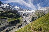 Hiker in the mountains on hiking trail to Grindelwald, glacier Grindelwald-Fieschergletscher and summit of Walcherhorn, Bernese Oberland, Switzerland, Europe