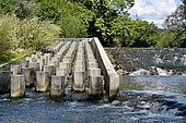 Scale of a fish pass on the Allan River, Allenjoie, Doubs, France